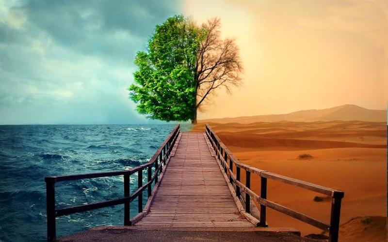 «Стратэгія» добрага і злога духаў