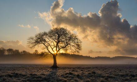 Жаданні, пачуцці і выклікі як сігналы духоўнага жыцця