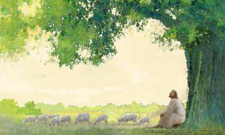 """""""Пастыр, вывядзі мяне на пашу жыцця"""""""