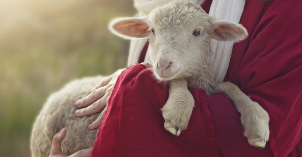 Пастыры, найміты, ваўкі